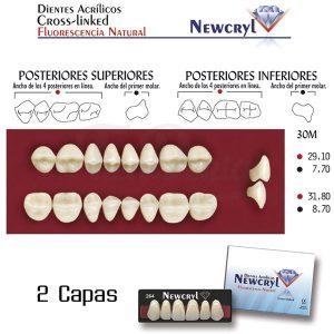 Dientes-Acrílicos-Newcryl-Vita-Inferiores-Color-A2-30M-Newstetic-TienDental-material-odontológico